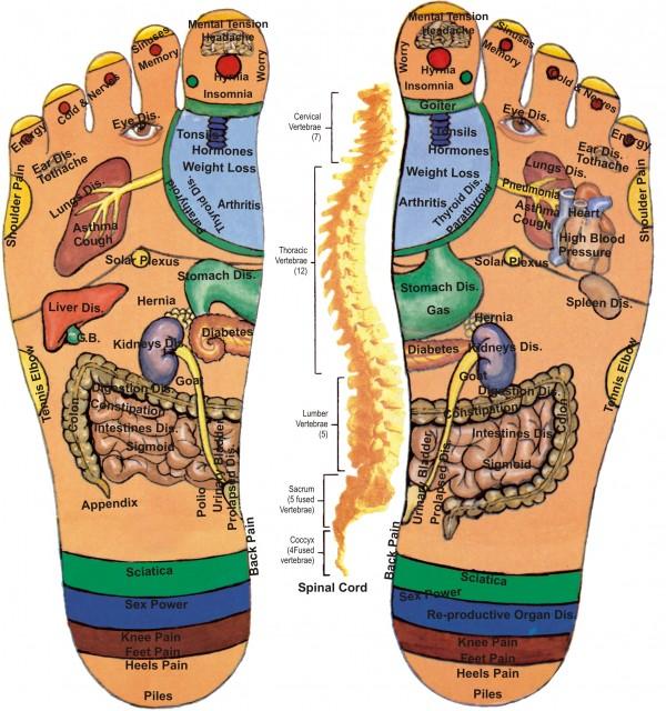 health benefits from foot reflexology_map