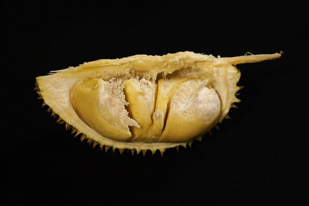 exotic fruit nutritional benefits-durian pulp