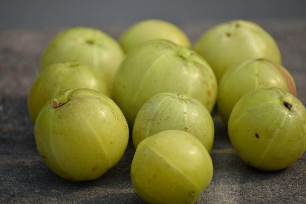 exotic fruit nutritional benefits-amla fruit