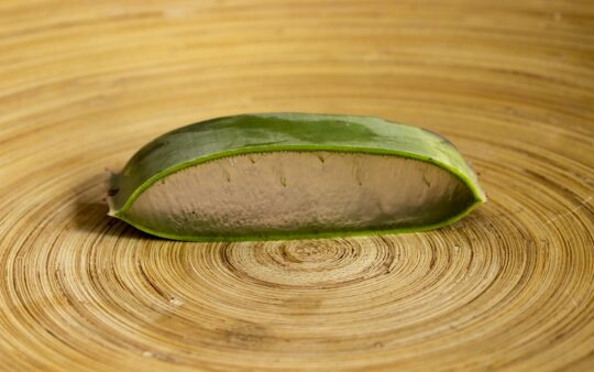 what are the uses of aloe vera-aloe gel