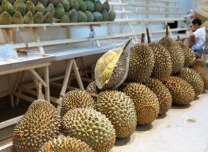 durian_fruit