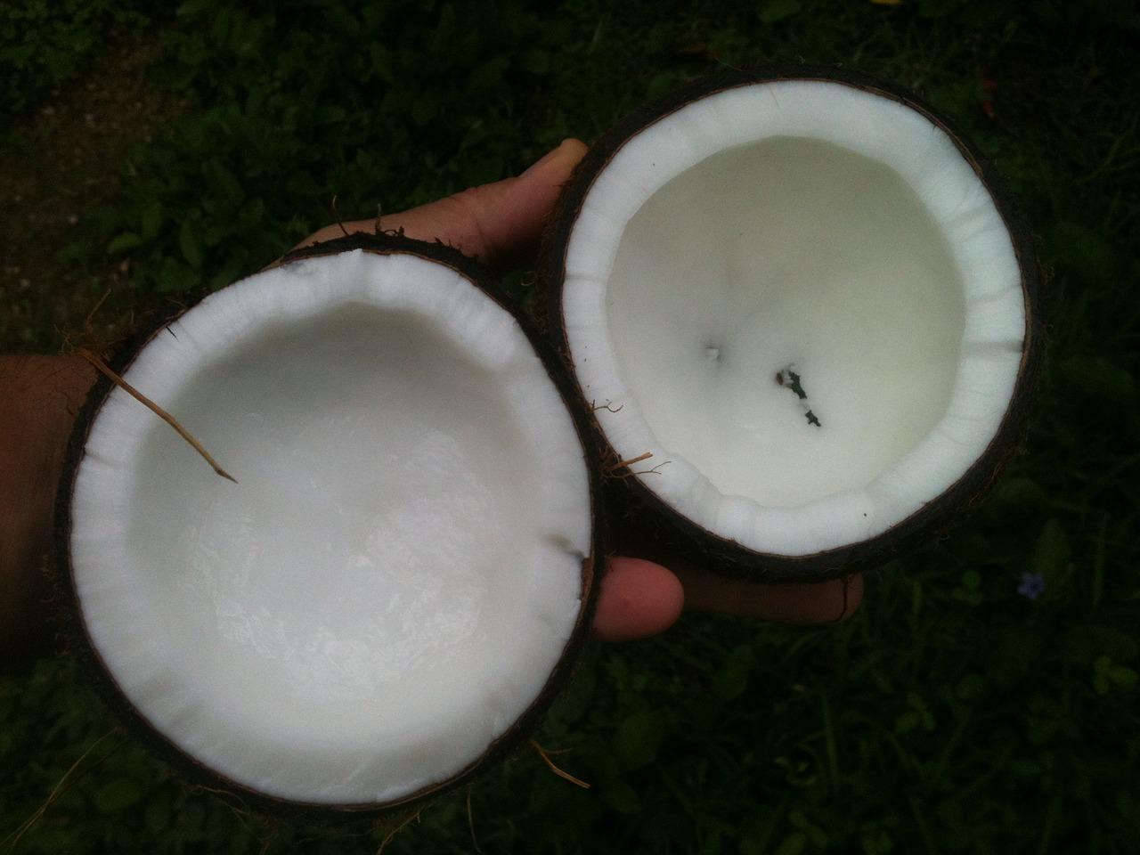 coconut-open