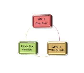 ayurveda 3 body types-vata_pitta_kapha