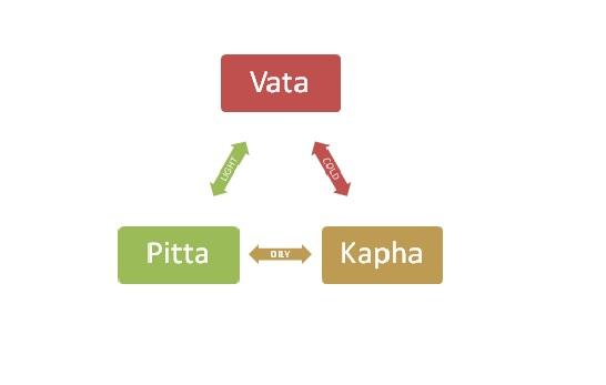 ayurveda 3 body types_vata_pita_kapha