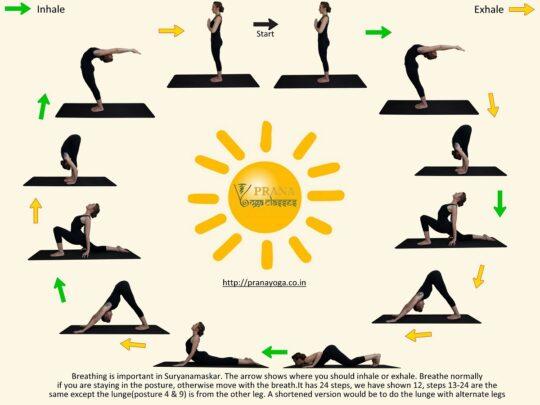 yoga asanas for flexibility-sun_salutation chart