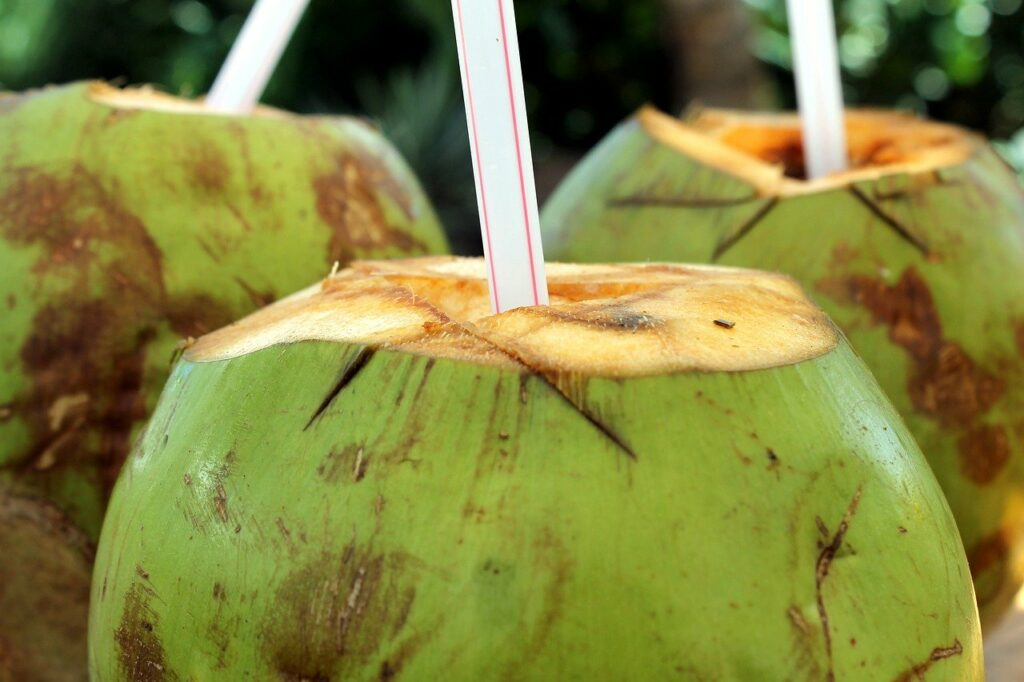 Fasting for a day-coconut water
